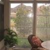 suncraft-eze-breeze-porches-15